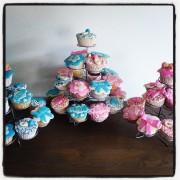 Geboorte Cupcakes 2