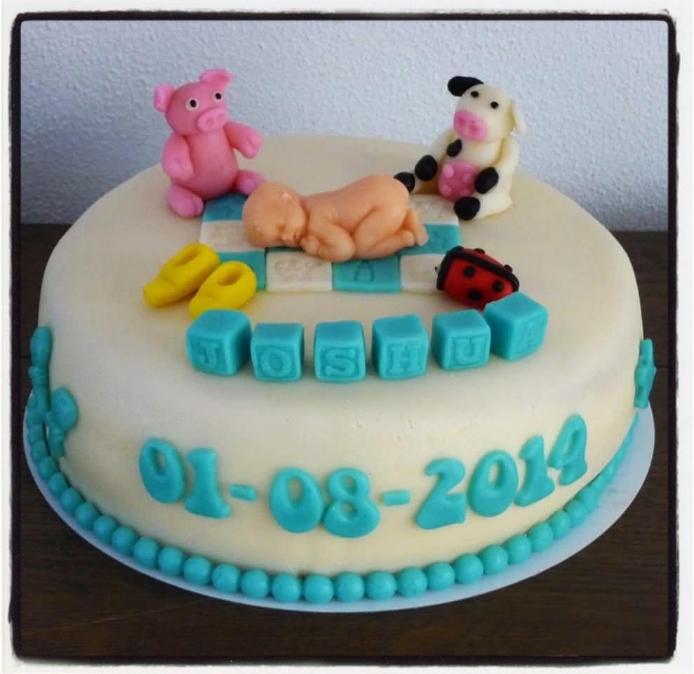 geboorte taart Geboorte Taart Meisje (tot 25 personen 1 laag)   Cakepunt geboorte taart